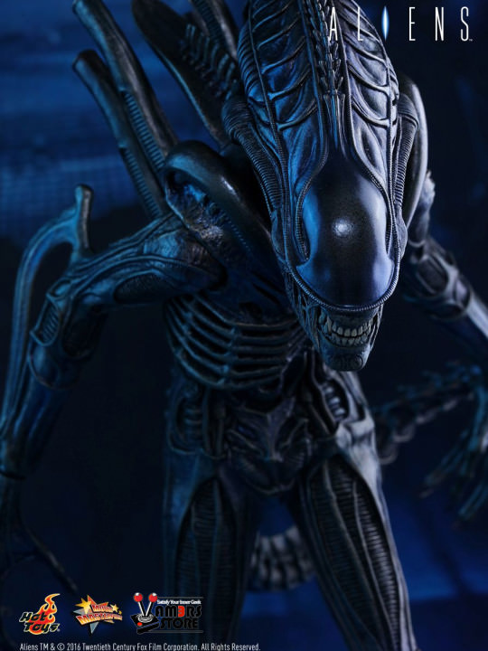 Vamers Store - Hot Toys - MMS354 - Aliens - Alien Warrior - 05
